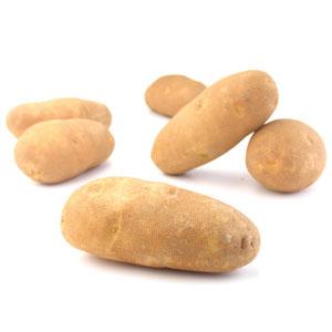 Potato - Russet Organic