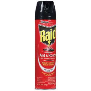 Raid Ant & Roach Killer - Outdoor Fresh