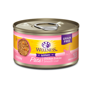 Wellness Canned Cat - Chicken Pate for Kittens