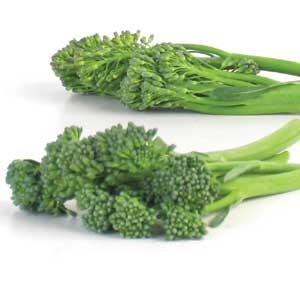 Broccolini - Organic