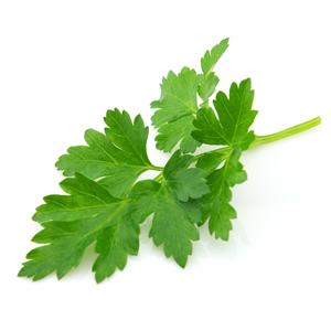 Parsley Flat Leaf - Fresh