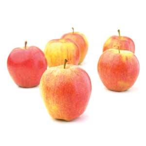 Apple - Gala