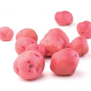 Potato - Baby Red