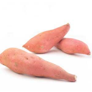 Potato - Yam